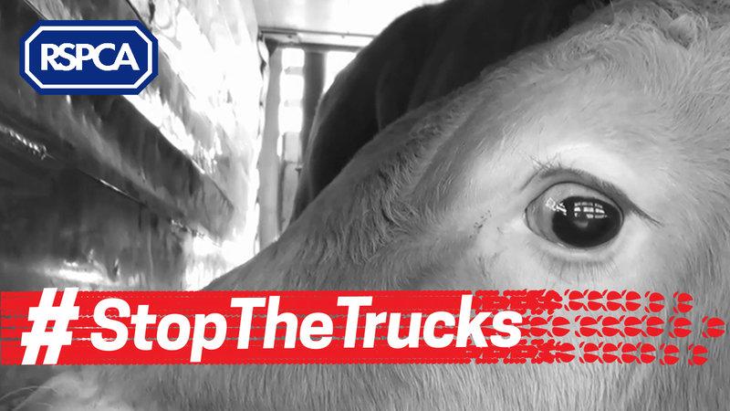 stop_the trucks